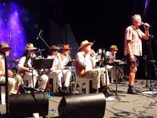 Bush Capital Band at National Folk Festival 2017